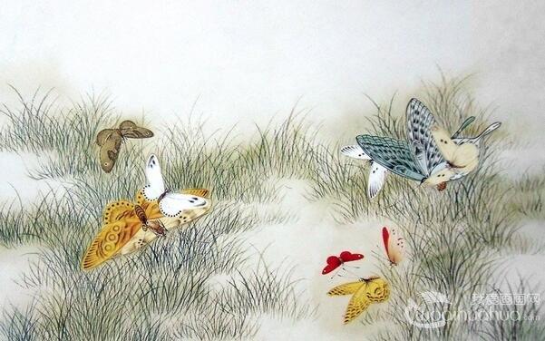 中国画昆虫的画法有哪些