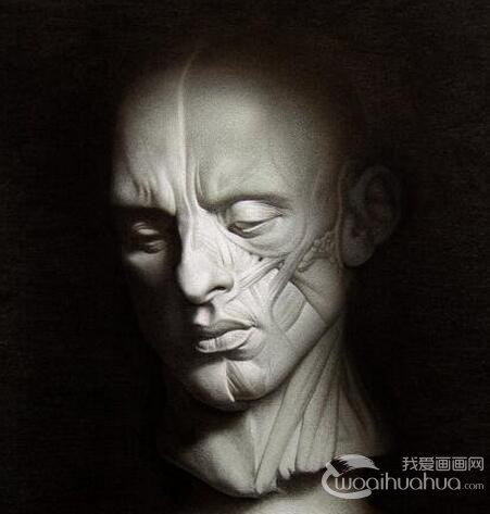 石膏像鼻子的素描画图片 各种鼻子素描