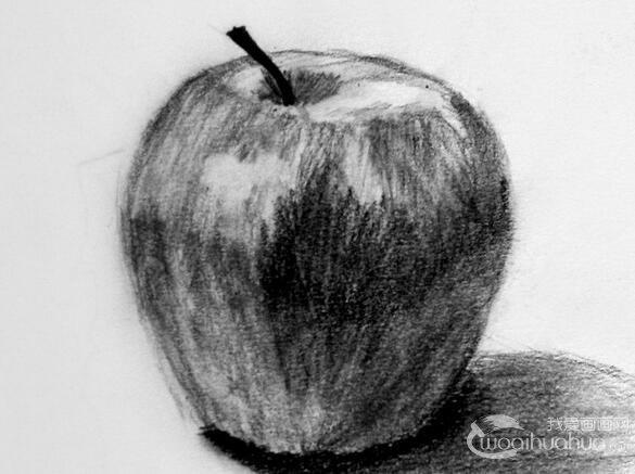 优秀的苹果素描作品欣赏图片