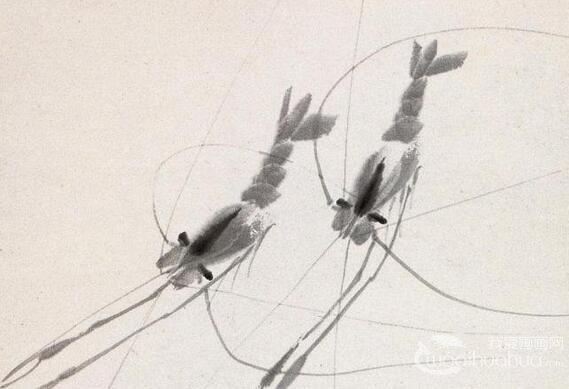 齐白石画虾赏析