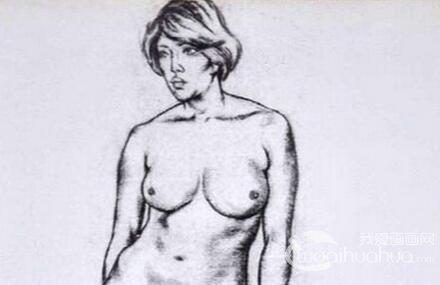 人体素描绘画中身体比例及各部位形状