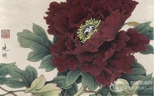 工笔紫红牡丹的画法 李晓明工笔牡丹设色技法教程