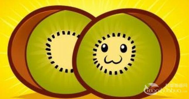 幼儿学画画:猕猴桃的简笔画