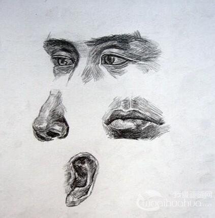 素描五官技巧:素描头像中如何画好人物的嘴型