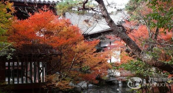 关于日本美术与日本庭院之间的关系
