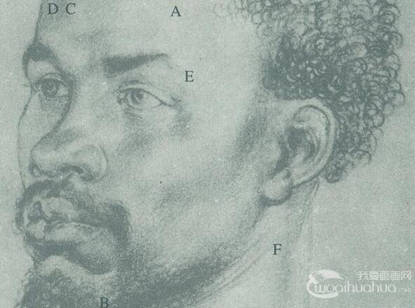 通过丢勒的素描作品研究头部的结构