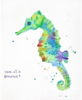 彩铅之海马绘画教程