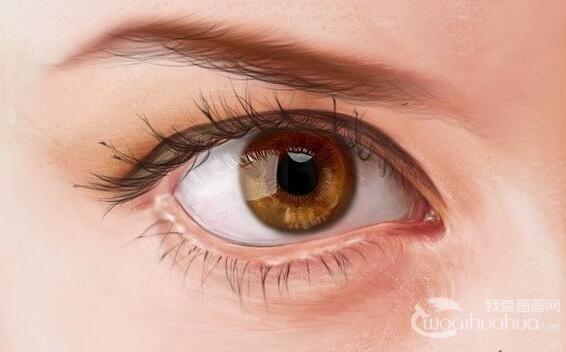 ps绘画教程之眼睛