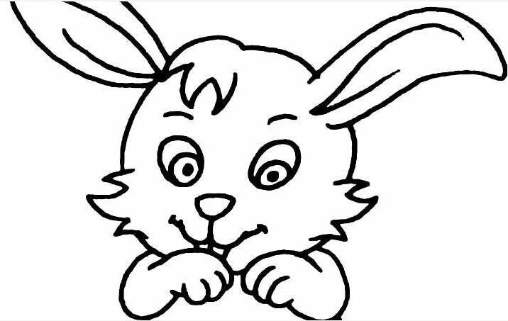 简笔画兔子图片大全,儿童简笔画兔子卡通图片(4)