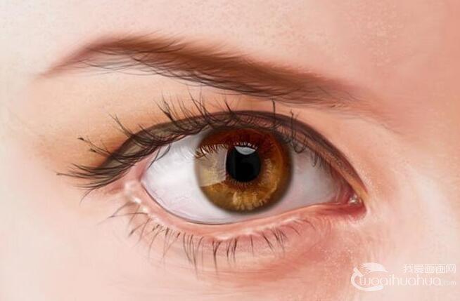 眼睛的绘画教程:PS逼真眼睛的画法图文详解