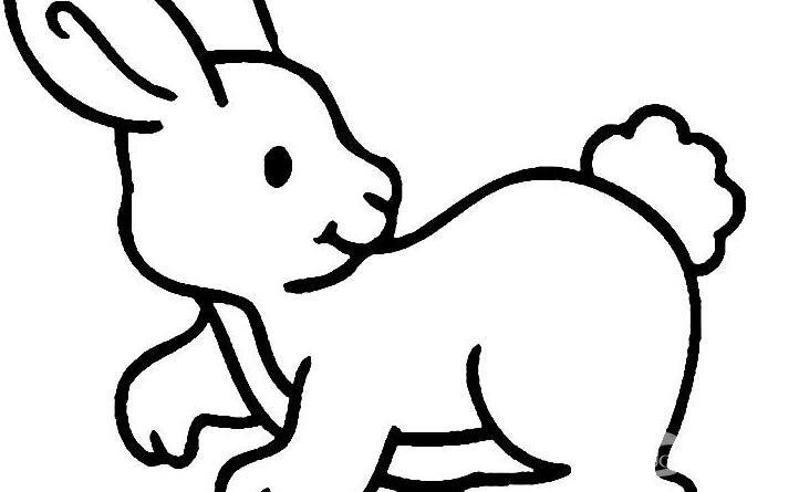 可爱的兔子简笔画图片大全