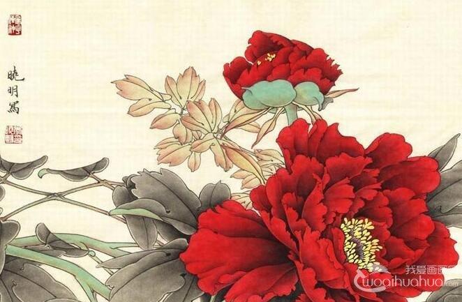 工笔紫红牡丹的画法_李晓明工笔牡丹设色技法教程