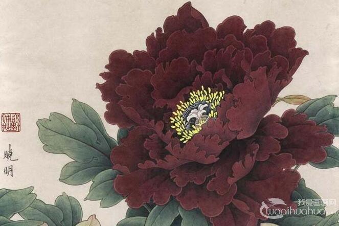 工笔画墨紫色牡丹绘画步骤_李晓明工笔花鸟画技法教程