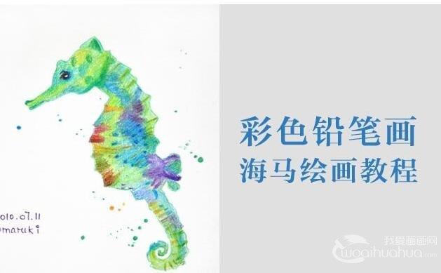 彩铅画海马绘画教程:海马的画法图文步骤