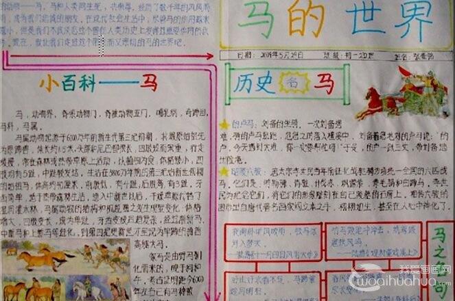 关于马的手抄报:2014马年春节手抄报