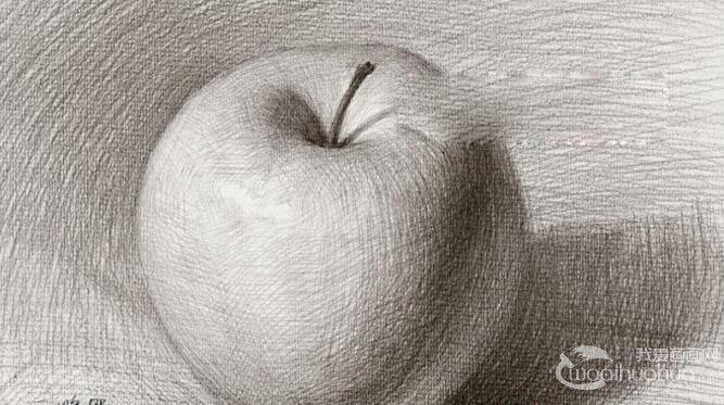 素描写生对象:苹果照片图片 1,用画结构素描的方法画出苹果的外轮廓