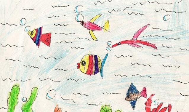 水彩简笔画:快乐海底世界--金鹰杯儿童画大赛参赛作品-简笔画图片
