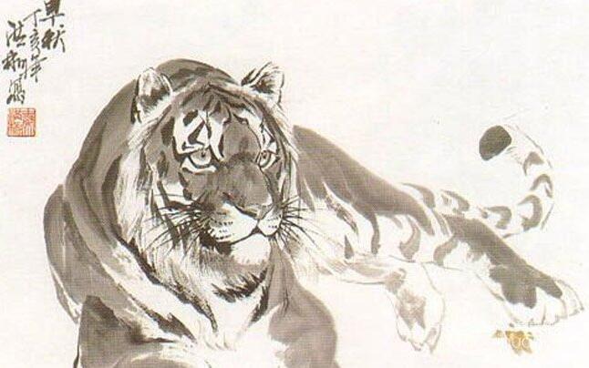 国画老虎绘画教程:水墨老虎画法图文步骤