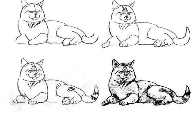 猫的22种画法(18)横卧着的肥猫线描速写教程