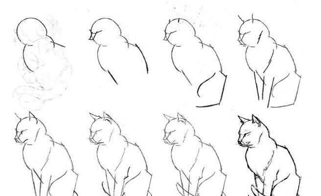 猫的22种画法(20)蹲卧着睡觉的猫线描速写教程