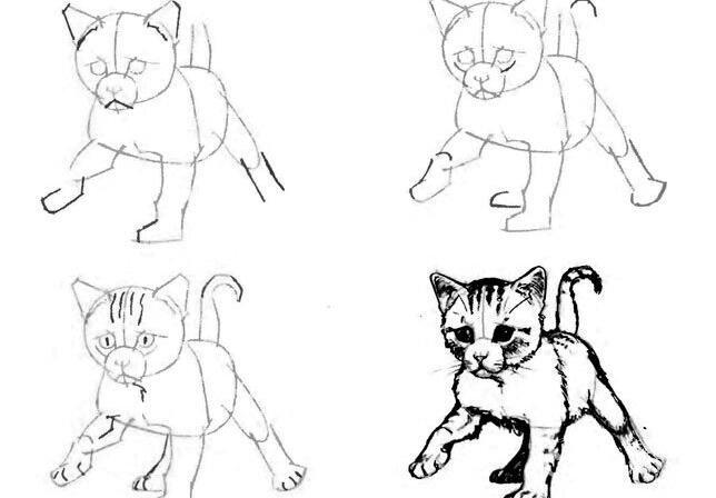 猫的22种画法(19)学走路的小猫咪线描速写教程