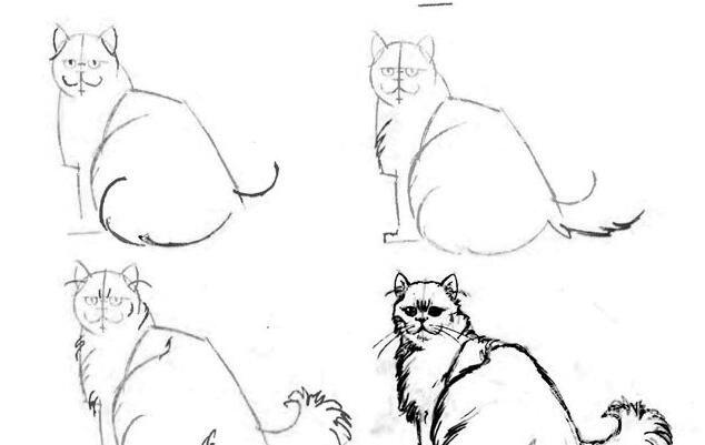 猫的22种画法(6)猫咪线描速写教程之三分之二侧卧回首姿势