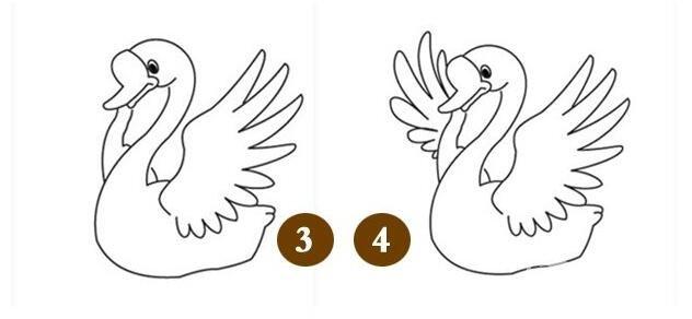 简笔画天鹅教程:天鹅的简笔画画法步骤