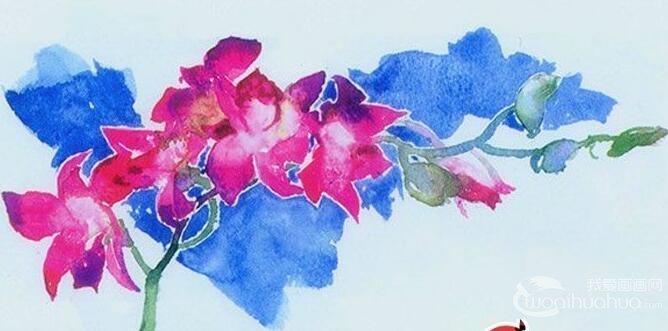 水彩画鲜花教程:花的水彩画绘画图文步骤