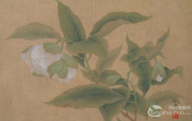 国画工笔花卉教程:临摹工笔画《夜合花图》的步骤
