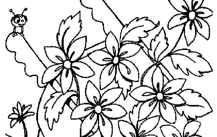 各种植物花儿简笔画图片26副(下)-简笔画花 我爱画画网