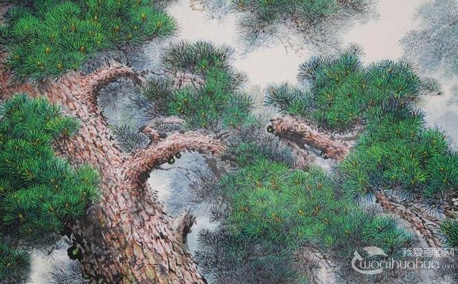 各种松树的工笔国画图片及画法