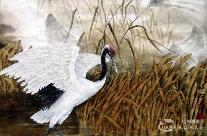 仙鹤国画图片(10P)工笔国画仙鹤精品欣赏