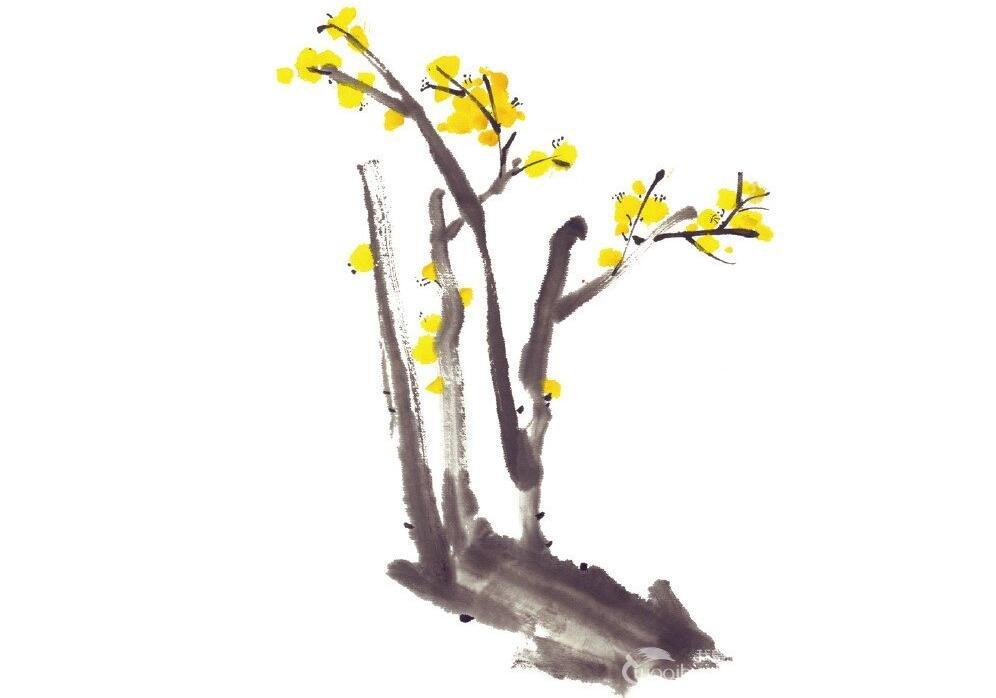 水墨腊梅的绘画方法