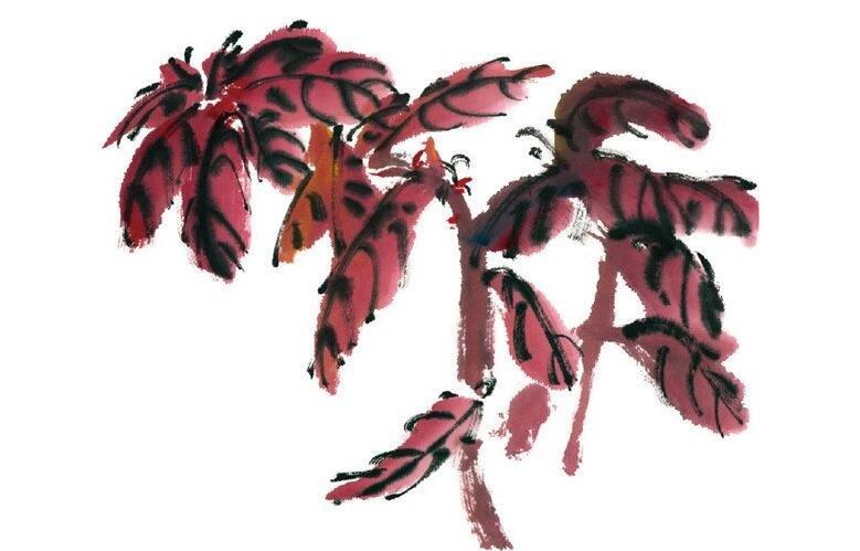 水墨雁来红的绘画技法