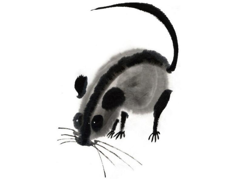 水墨十二生肖子鼠的绘画技法