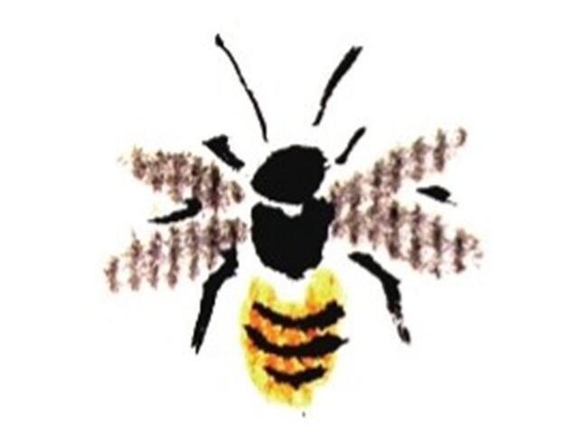 国画蜜蜂的绘画技法