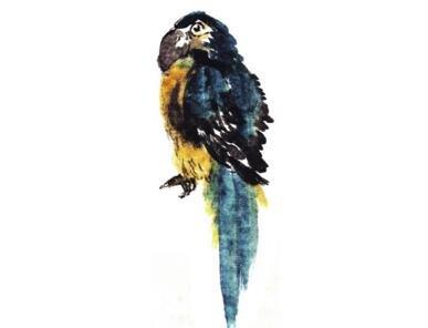 国画鹦鹉的技法