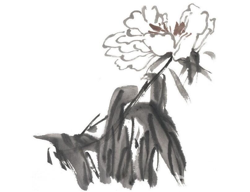水墨芍药的绘画技法