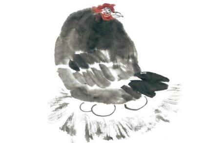 国画母鸡的绘画教程