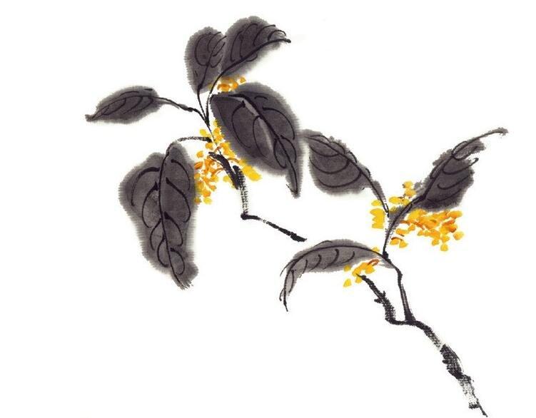 水墨桂花的绘画技法