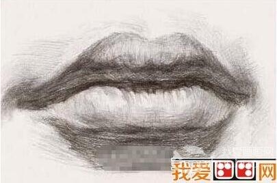 素描嘴巴的绘画教程