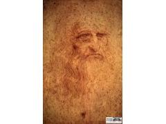 达芬奇绝密素描手稿珍藏版高清组图