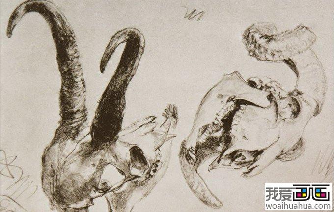 大师门采尔静物素描作品欣赏大全 18副高清大图 12