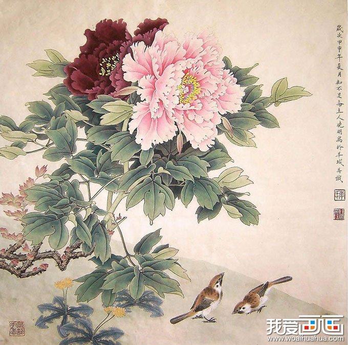 工笔国画牡丹图片图片欣赏组图(5)