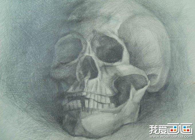 骷髅素描,骷髅图片,骷髅头素描图片高清组图(2)