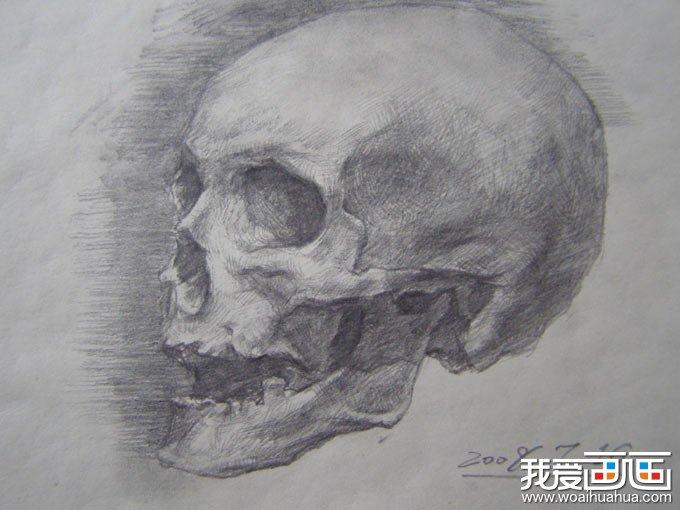 骷髅素描,骷髅图片,骷髅头素描图片高清组图 6图片