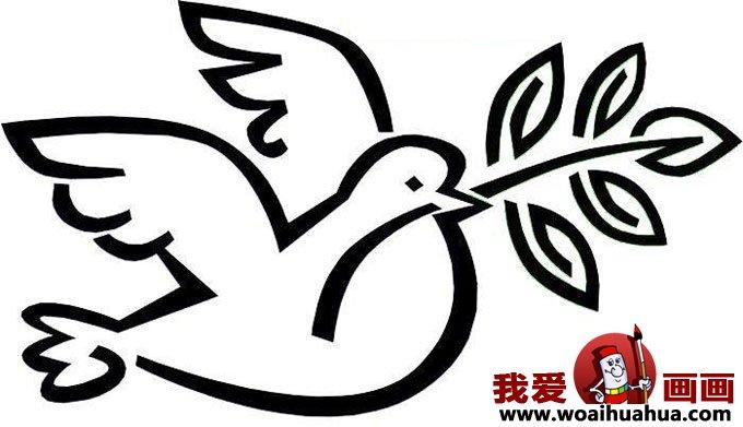 鸽子的简笔画-6张和平鸽简笔画图片(3)