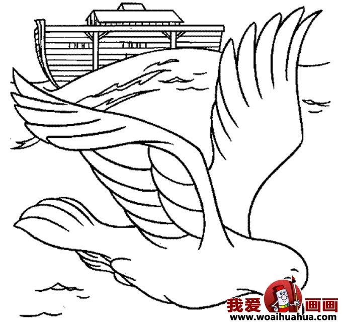 鸽子的简笔画-6张和平鸽简笔画图片(5)