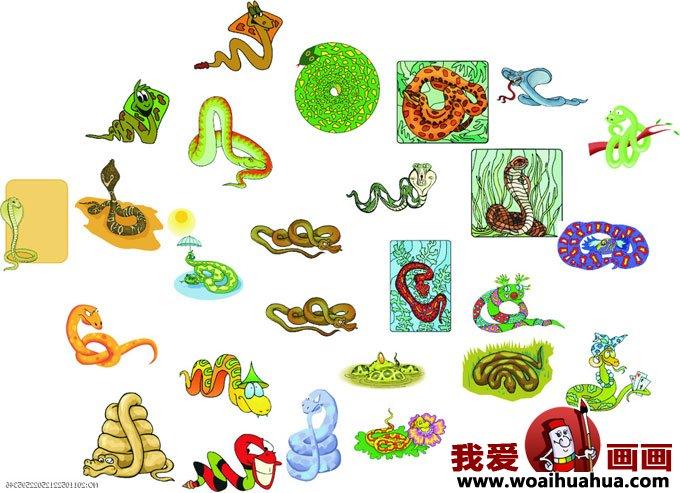 卡通画蛇-各种形态的小蛇卡通画图片大全(3)_儿童画