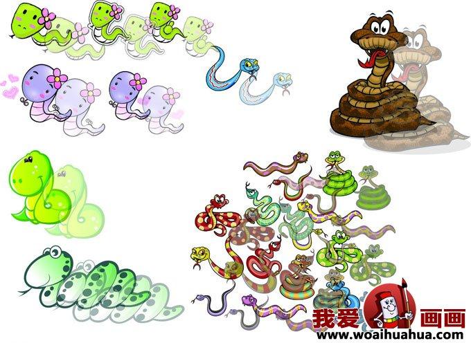 各种形态的小蛇卡通画图片大全(4)-儿童卡通画-我爱画画网; 如何画蛇